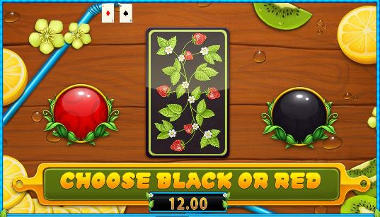 Fresh Fortune double gamble option
